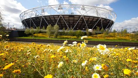 olympic park 2.