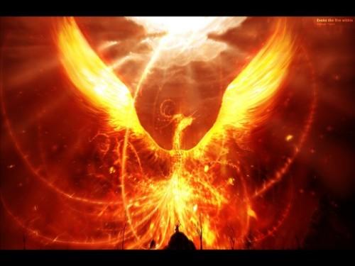 Phoenix-bird-1-