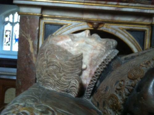 beard and chin of thomas wfriotghesley