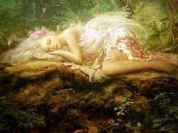 fairy asleep