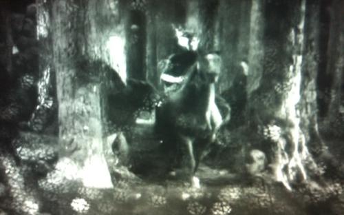jory on horseback