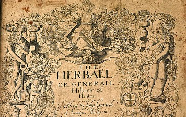 gerard herball clear (2)